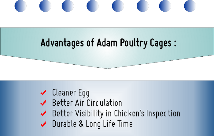 Adam Poultry - Cages Advantages