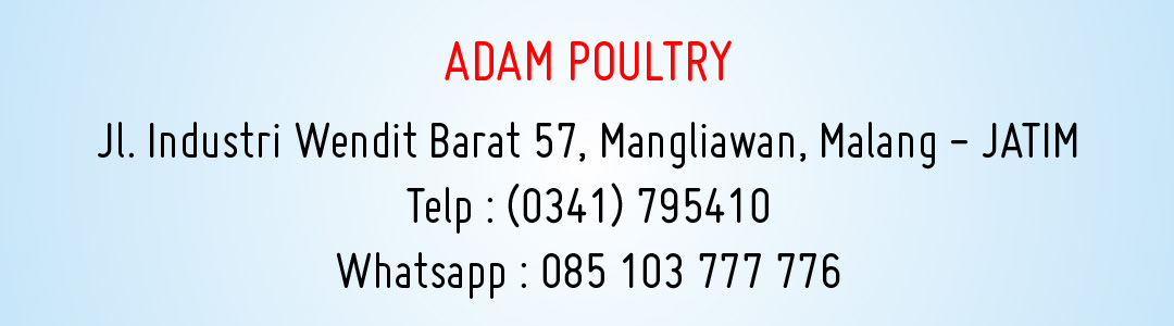 contact-adam